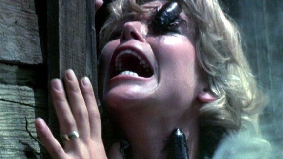 bug-1975